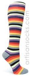 Sock it to Me Portland Multicolor Striped Knee High Sock