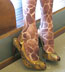 Celeste Stein Brown Giraffe Print Trouser Socks / Knee Socks